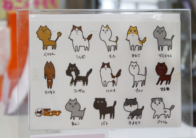 Menu of cats the day we visited.
