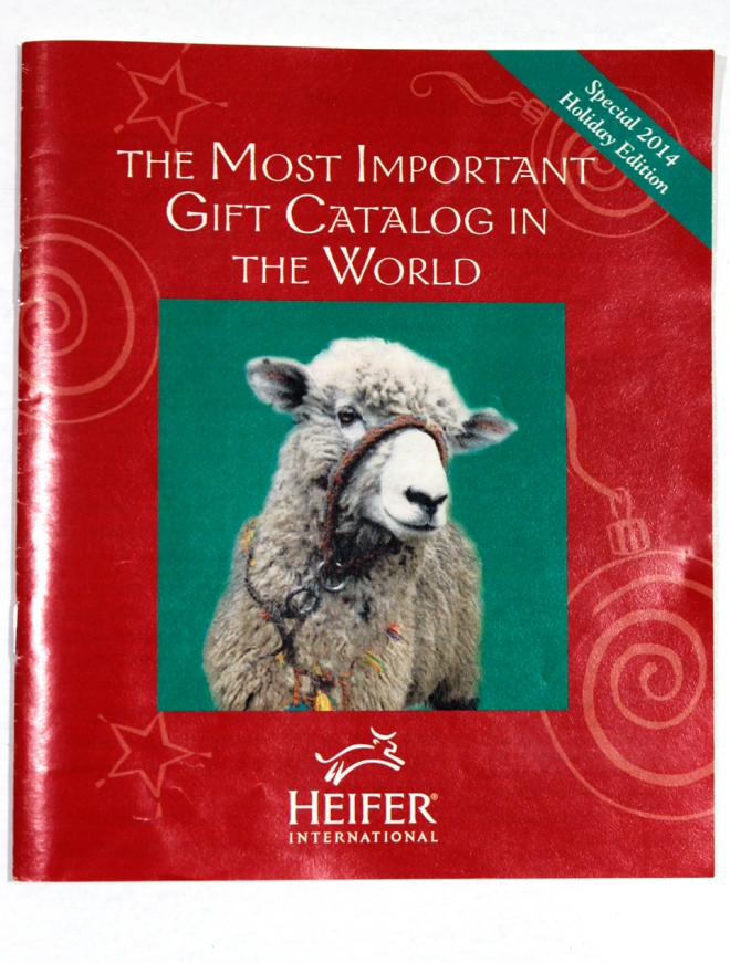 heifer internatl